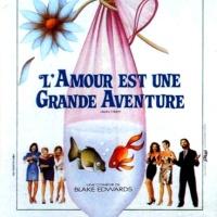 L'AMOUR EST UNE GRANDE AVENTURE de Blake Edwards (1989)