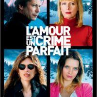 L'AMOUR EST UN CRIME PARFAIT de Jean-Marie et Arnaud Larrieu (2014)