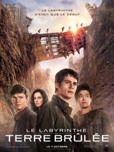 Affiche du film Le labyrinthe La terre brûlée