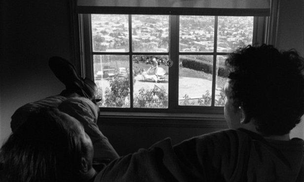 Duke et Boots devant leur fenêtre