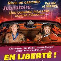 EN LIBERTÉ ! de Pierre Salvadori (2018)